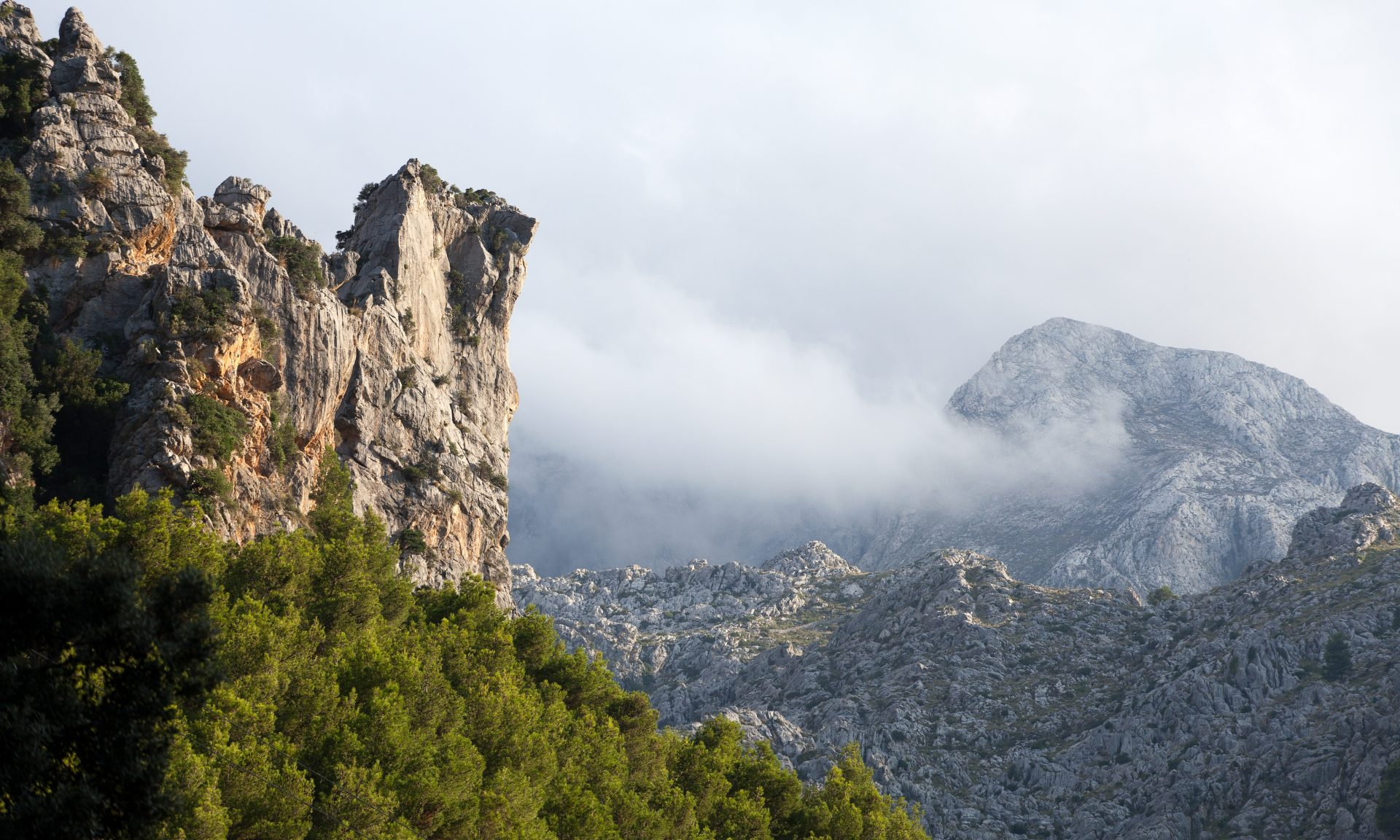 Numerous expats choose to live against the backdrop of the beautiful Tramuntana Mountains in the Balearic Islands.