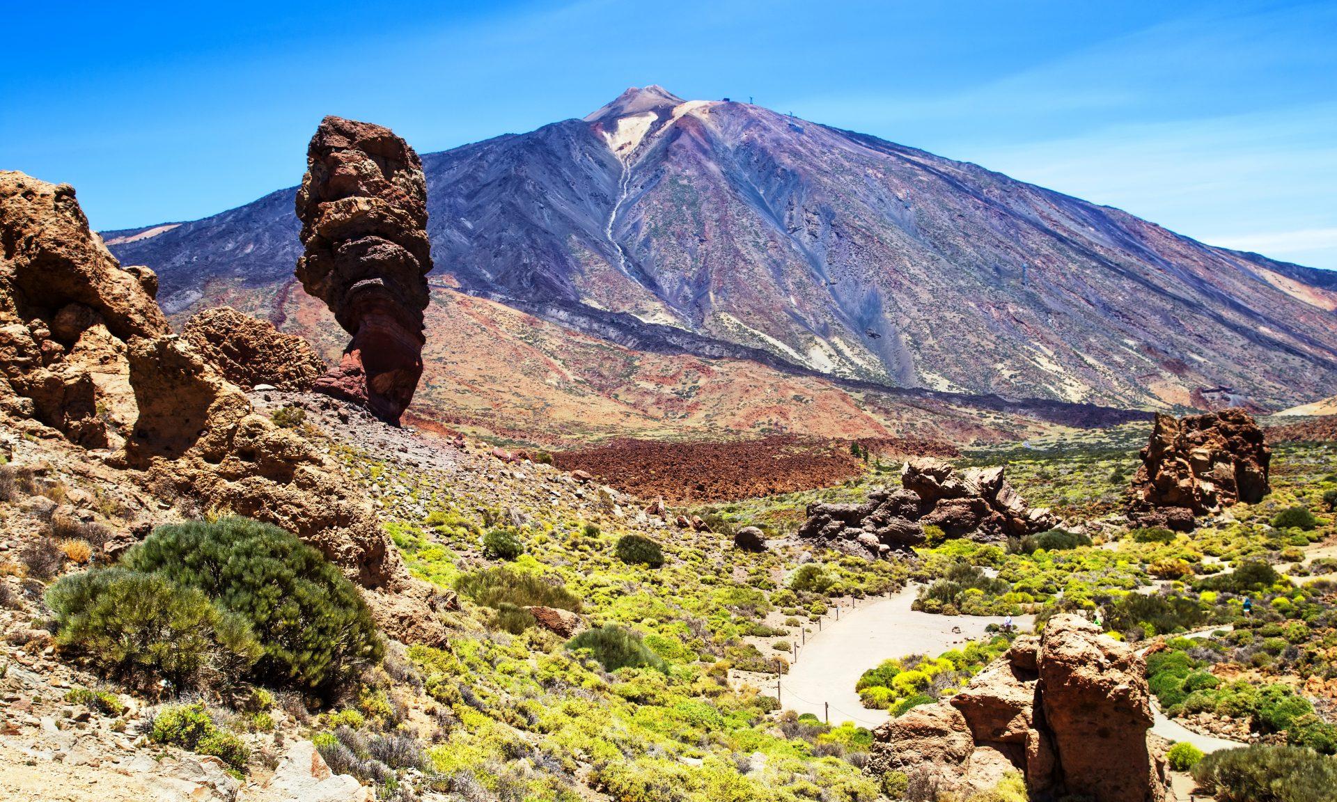 Where to buy - Canaries - Tenerife