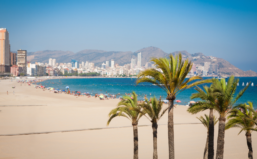 Benidorm's glorious beach.