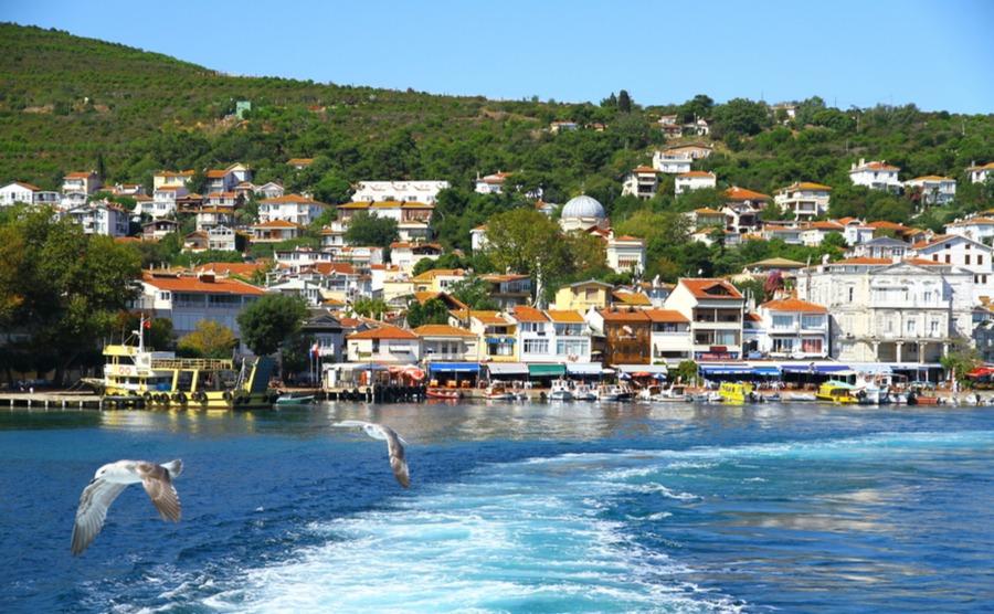 Turkey's wild side