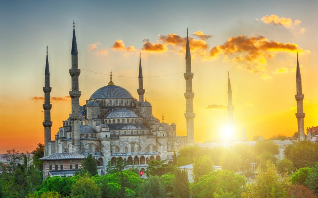 Two-minute guide to viewing trips in Turkey