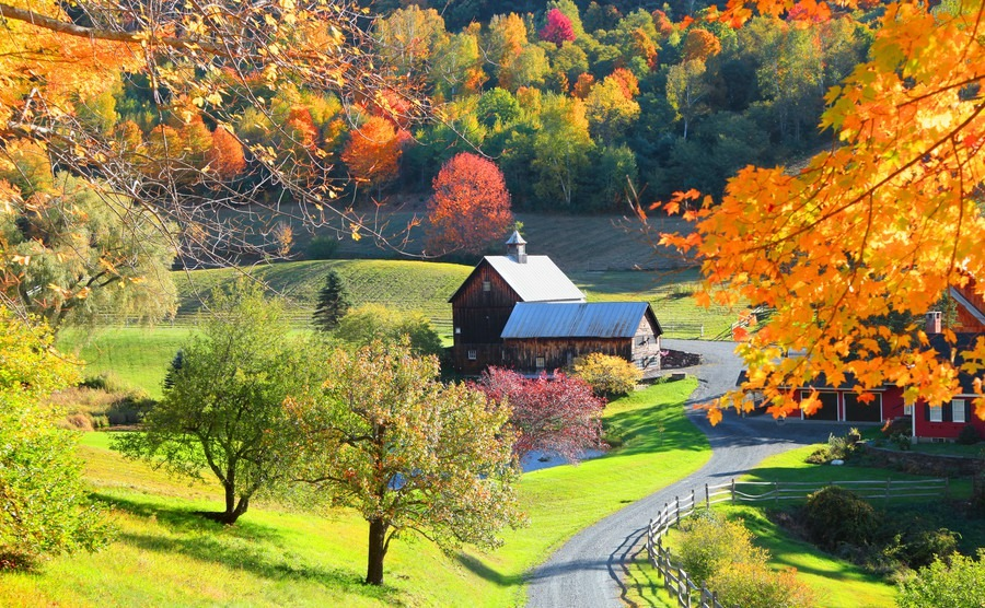 Rural Bliss in Vermont