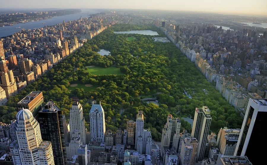 Your guide to buying a home in New York City