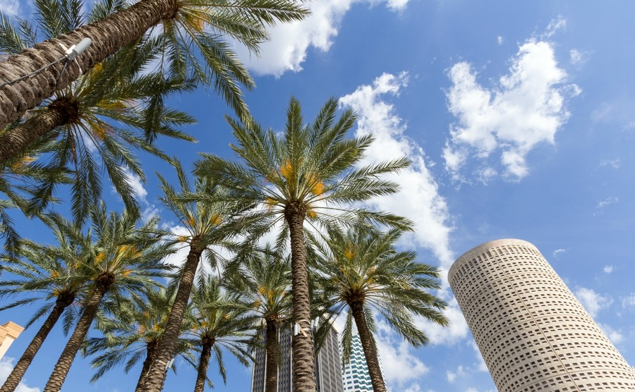 If you choose Tampa when you move to Central Florida, you'll be spoilt with 244 days of sunshine.