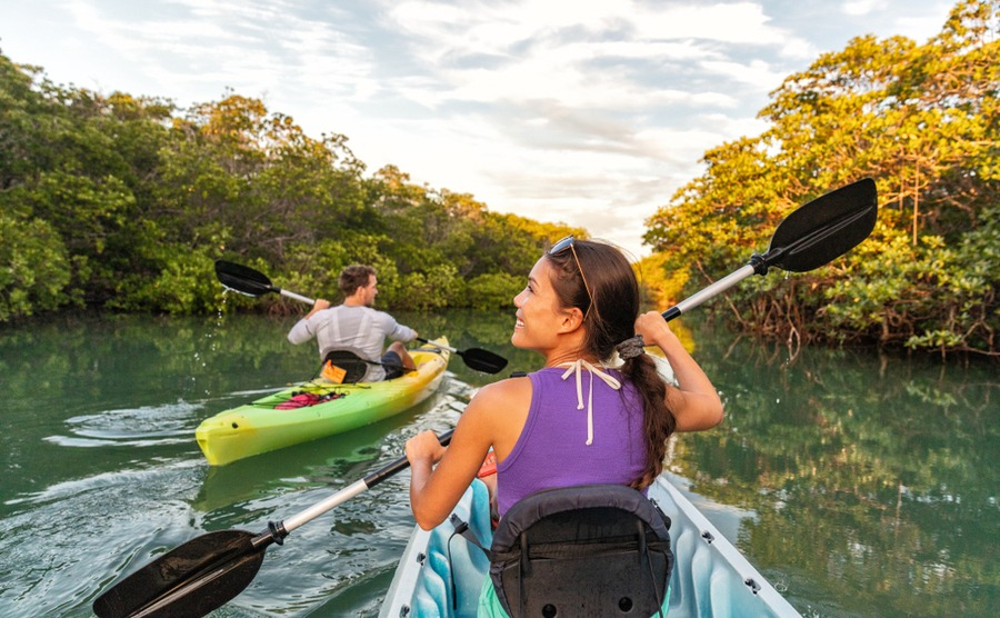 Islamorada's mangrove rivers are popular for kayakers.